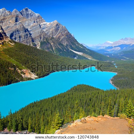 Peyto Lake of Banff National Park in Canada. - stock photo