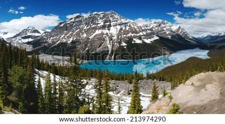 Peyto Lake Panorama in the Canadian Rockies - stock photo