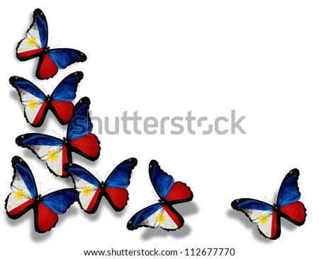 Philippine flag butterflies, isolated on white background - stock photo