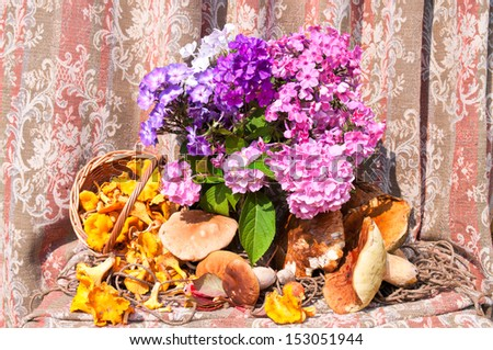 phlox bouquet with chanterelles and boletus edulis mushrooms still life