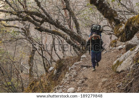 PHORTSE THANGA, NEPAL - CIRCA OCTOBER 2013: porters on Himalayan paths is an integral part of their circa October 2013 in Phortse Thanga. - stock photo