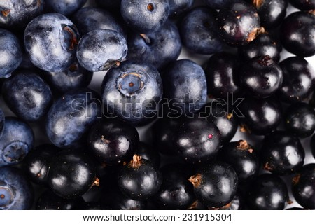 Photo close-up view of fresh blueberries and blackcurrants background - stock photo