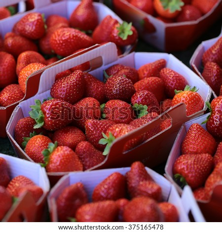 Photo closeup full of clean organic natural fresh tasty ripe red garden strawberry fruit vitamin for healthy eating nutrition diet for sale in paper bags on blurred background, square picture - stock photo
