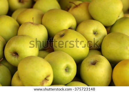Photo closeup many clean organic fresh tasty ripe yellow apples crop fruit full of vitamin for healthy eating diet ball form for sale on natural background, horizontal picture - stock photo