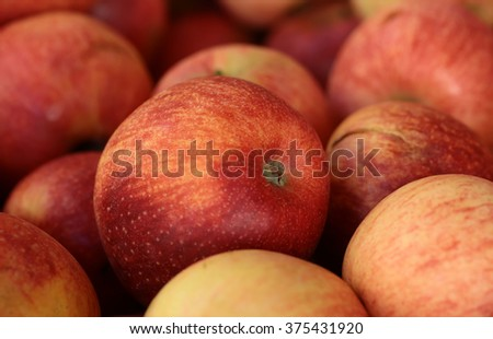 Photo closeup many clean organic natural fresh tasty ripe striped red yellow apples crop fruit full of vitamin for healthy eating diet ball form for sale on blurred background, horizontal picture - stock photo