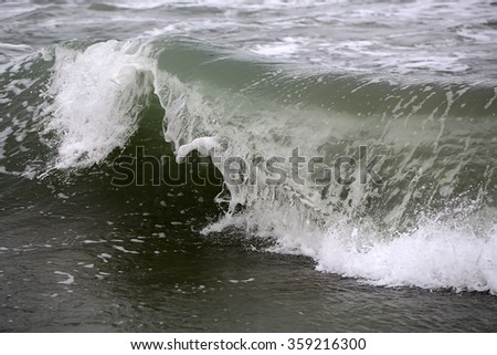 Photo closeup of breathtaking breaking big wave crest comb curler top storm with splashes white spindrifts spoondrifts of clear grey sea day time on seascape background, horizontal picture
