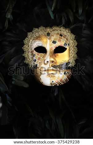 Photo closeup of one distinctive golden Venetian carnival mask with beautiful decoration of natural black feathers classic accessory for sale outdoor on wall on plume background, vertical picture