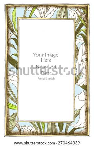 Photo Frame Lily Flower Leave Pencil Stock Illustration 270464339 ...