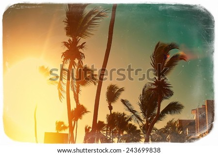 Photo in retro style on beach and palms behind blue summer dark sunset - stock photo