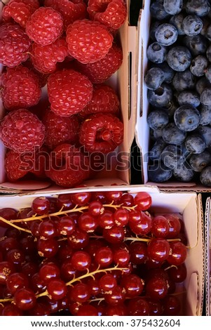 Photo macrography clean organic natural fresh tasty ripe blueberries raspberries red currants berries full of vitamin nutrition for sale in paper bags on green background, vertical picture - stock photo