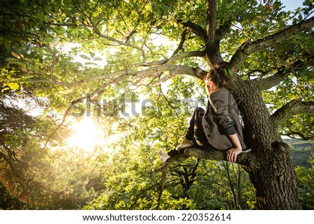 Photo of a beautiful young woman or girl sitting in the tree and watching the sunset enjoying nature evening outdoors. Soft yellow light. Sunshine. - stock photo
