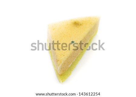 Photo of a piece of  bread, and mold (on a white background) - stock photo
