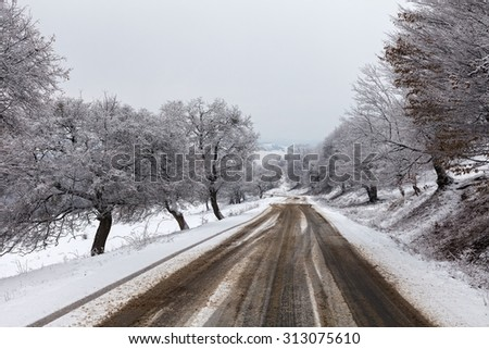 Photo of a snowy road in a winter landscape
