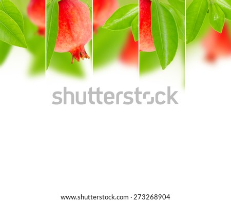 Photo of abstract pomegranate mix with white space for text - stock photo
