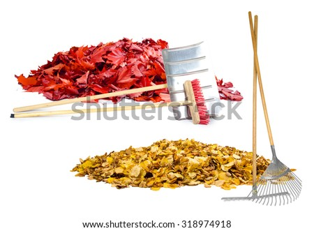Photo of autumn leaf heaps with cleaning tools isolated on white - stock photo