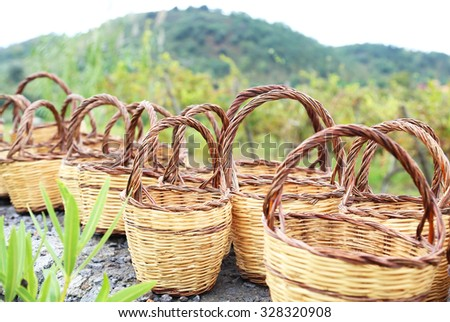 Photo of baskets for harvest. Vineyard - stock photo