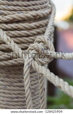 Photo of closeup roll of rope - stock photo