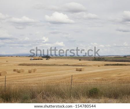 Photo of farmers stacking hay bales in east Idaho taken during September harvest season. - stock photo