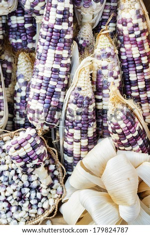 Photo of Grains purple corn