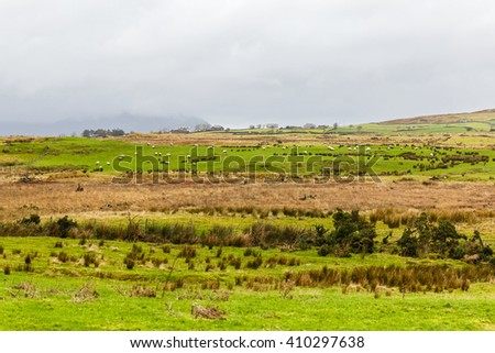 Photo of irish countryside landscape in winter