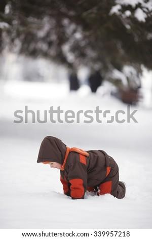 photo of little boy in winter park - stock photo