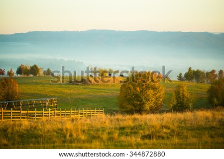 Photo of peaceful sunny autumn country scene landscape of colorful green yellow fields hills with haystacks cows grazing on pasture and mist in mountains on rural background, horizontal picture