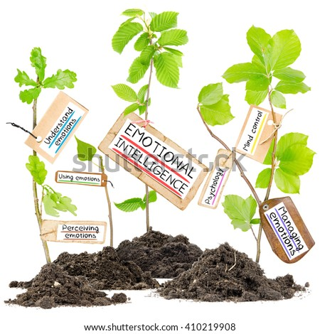 Photo of plants growing from soil heaps with EMOTIONAL INTELLIGENCE conceptual words written on paper cards - stock photo
