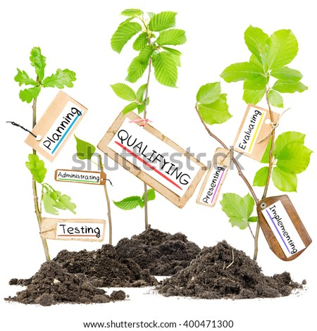 Photo of plants growing from soil heaps with QUALIFYING conceptual words written on paper cards - stock photo