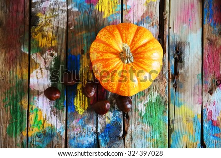 Photo of pumpkin on colorfull background - stock photo