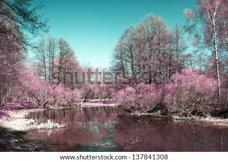 Photo of summer landscape shot in the IR spectrum