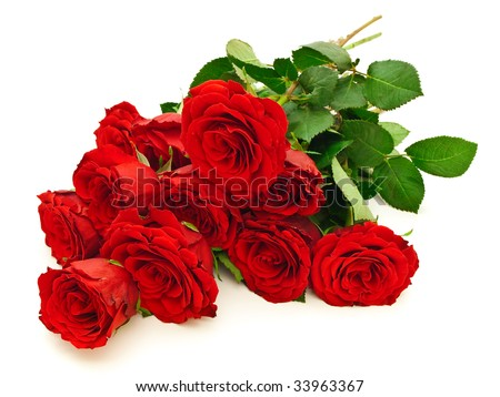 photo of the roses bouquet against the white background