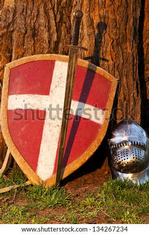 Photo of the shield, sword and the helmet near the tree - stock photo