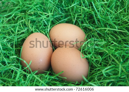 photo of three eggs on green background