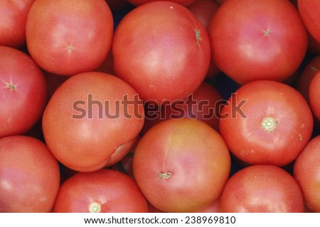 Photo of very fresh tomatoes. Red tomatoes background. Group of tomatoes - stock photo