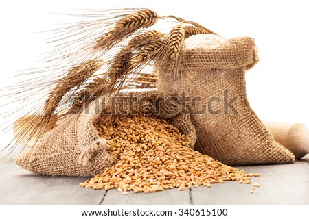 Photo of wheat grains and flour on the wooden table - stock photo
