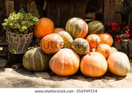Photo of whole fresh ripe orange pumpkins stacked on sunny autumn day harvest time on countrified background, horizontal picture - stock photo
