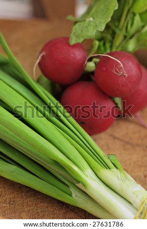 Photo Onion and Radish - stock photo