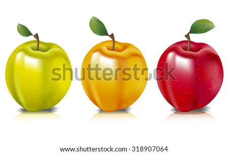 Photo realistic illustration of colorful apples represented in yellow, green and red colors, arranged in a row.
