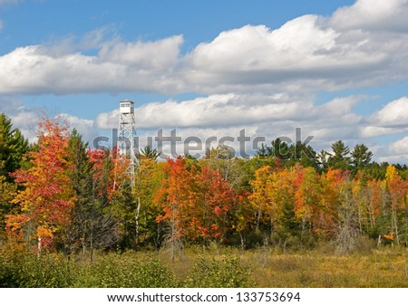 Photograph of a tall forest service fire tower looming over a colorful autumn northwoods forest. - stock photo