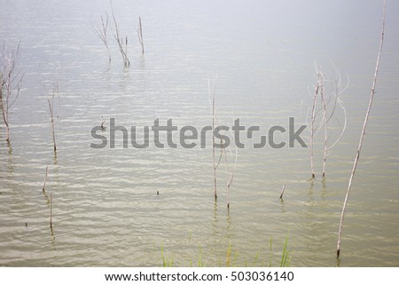 Photograph of lake in Asia.
