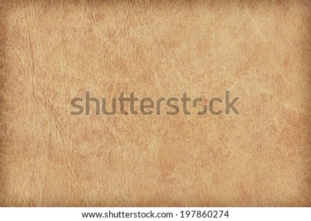 Photograph of old, animal skin parchment, coarse grained, grunge texture sample