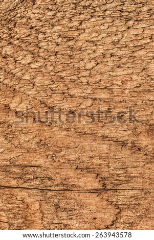 Photograph of old, roughly treated, weathered, cracked, knotted Pine plank grunge texture.