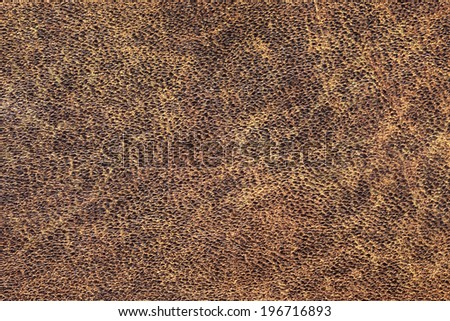 Photograph of old, weathered, rough, cracked, wrinkled, coarse grained, exfoliated cowhide texture sample