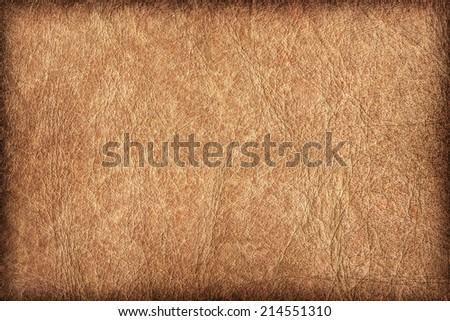 Photograph of old, weathered, rough, creased, coarse grained, exfoliated Beige leather, vignette grunge texture sample. - stock photo