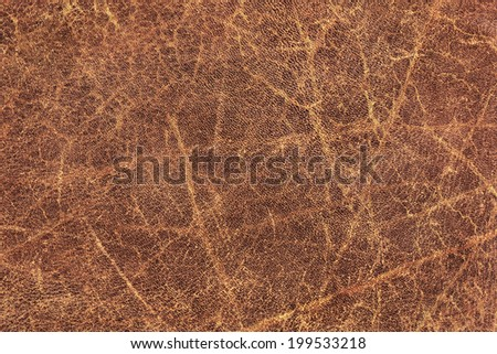Photograph of old, weathered, rough, creased, coarse grained, exfoliated cowhide texture sample - stock photo