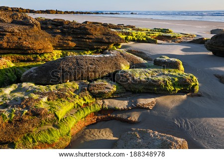 Photographed in early morning light, a sandy Atlantic Ocean beach south of St. Augustine, Florida features a natural coquina stone outcropping. - stock photo