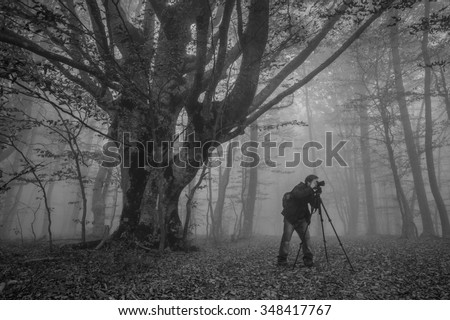 Photographer with camera and tripod shoots the forest in the fog. Black and white photography.