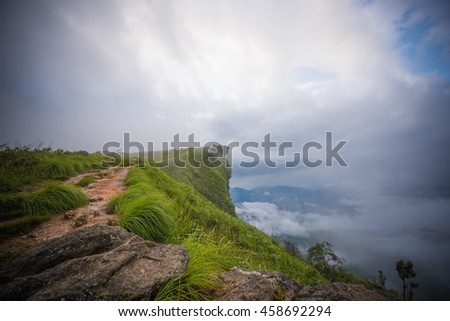 Phu Chi fa Mountain on foggy day , Chiangrai Thailand