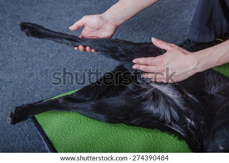 physical treatment - stock photo