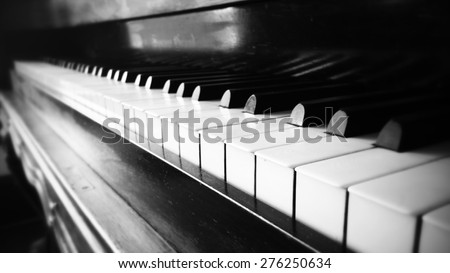 Piano Ivory  - stock photo